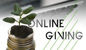 Online Giving Website